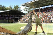 The popular Crocoseum at Australia Zoo on the Sunshine Coast