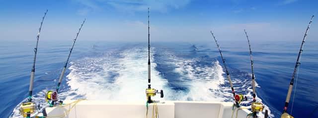 Sunshine Coast deep sea fishing tours